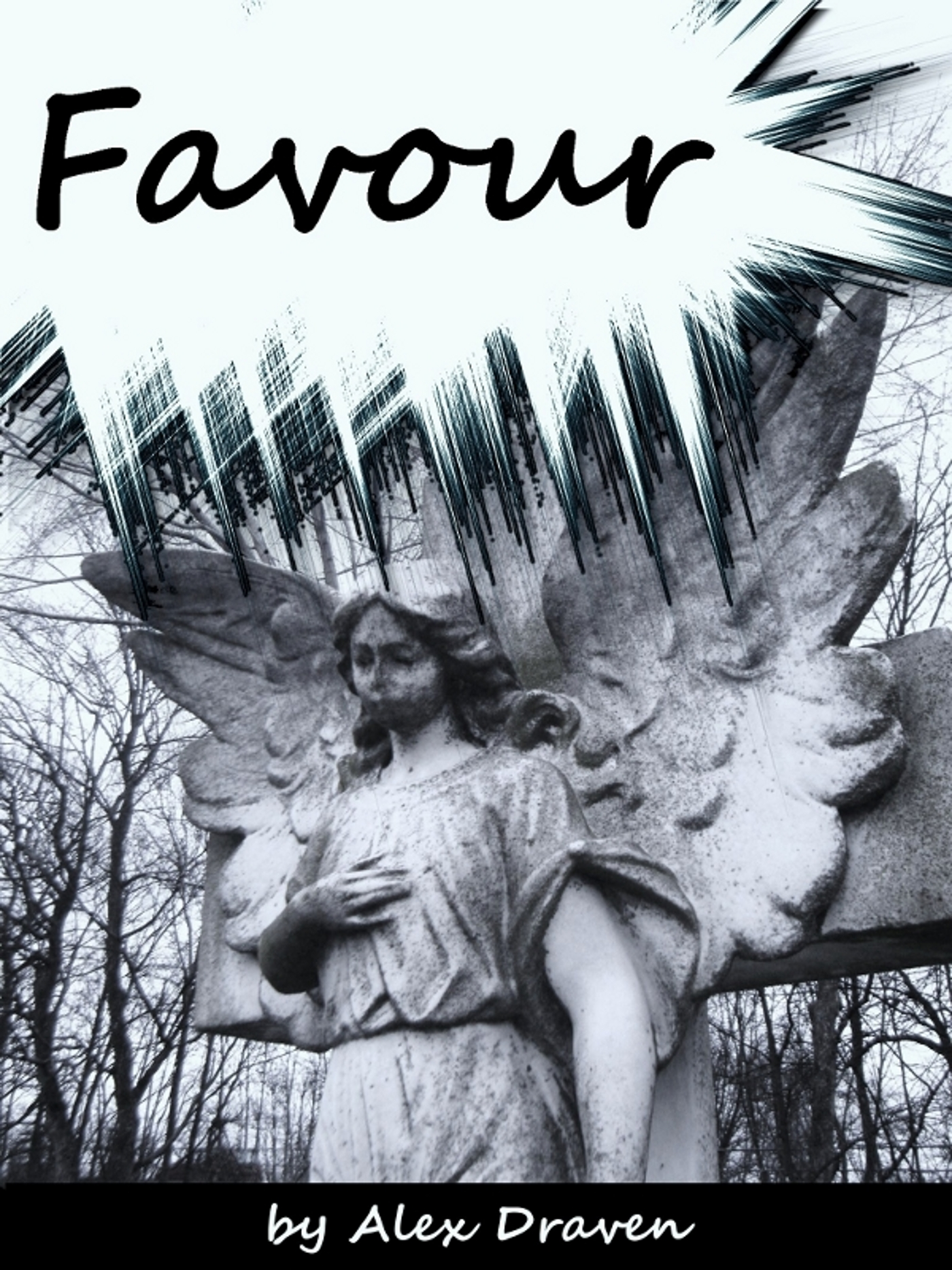 Book cover for Favour